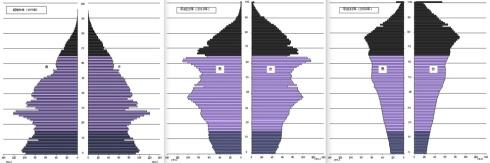 Demographics in Japan